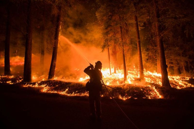 Image:2014 King bushfire California.jpg